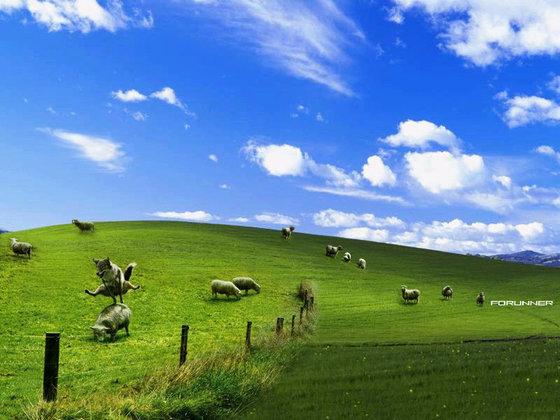 windowsXP sheep_and_wolf by_le_i_tBit
