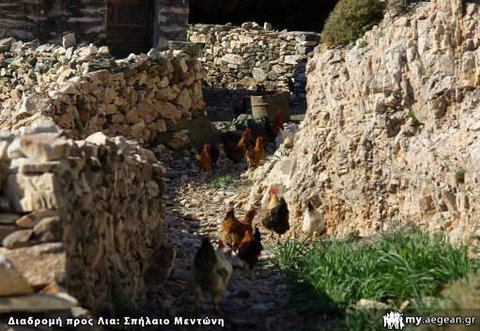 Σπήλαιο Μεντώνη - οικόσιτα ζώα