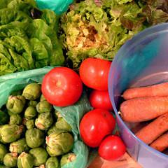 vegetables - bio - organic