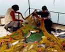αλιεία - ψαράδες